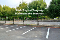 York Region Property Maintenance Services -  Fall Clean Up