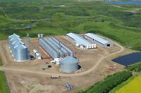 Grain Terminal Operator