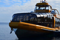 Chief Mate - 150 GT Full Time - Tobermory, Ontario