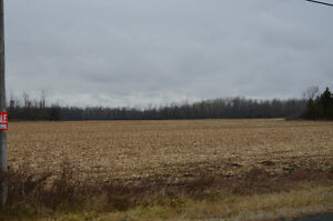 Excellent tile drained farm land for sale Cornwall Ontario image 1