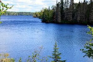 Rivière Péribonka (Bord de l'eau) Lac-Saint-Jean Saguenay-Lac-Saint-Jean image 4