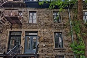 3 Bedroom Apartment McGill Ghetto Campus Available Now
