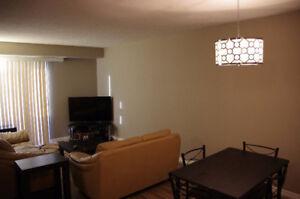 Estevan, SK 2 Bedroom Furnished Condo for Rent