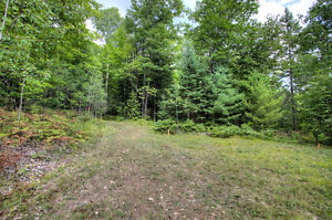 BEAUTIFUL LOT WITH DRILLED WELL ONSITE! Peterborough Peterborough Area image 10