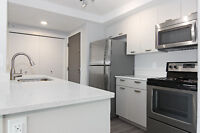 PET FRIENDLY, DOWNTOWN, NEWLY RENOVATED SUITE!!!
