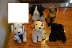 For Sale: Ty Beanie Babies *Retired & Rare* - Set of 13 Dogs 2 Sarnia Sarnia Area image 3