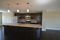 Brand new single family home--Windermere--1590 sq. ft