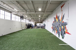 Personal Training - Near Yorkdale Mall - Private Gym Cambridge Kitchener Area image 4