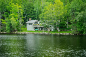 Dreamy Cottage on Lumsden Lake