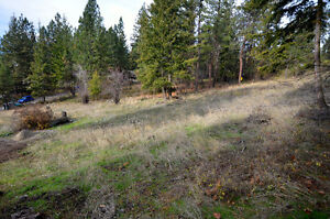 Land For Sale in Scenic Ridge Estates! Build Your Dreamhome!