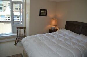 Furnished condo - gym and rooftop patio access off Spring Garden