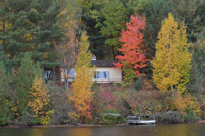Waterfront Cottage for Sale on Long Lake