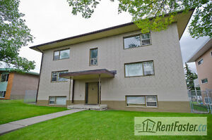 Large 1 Br Apartment, Mayland Heights