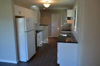 Windsor Park OPEN HOUSE Today from 1130-130; 3 bed, 1 bath