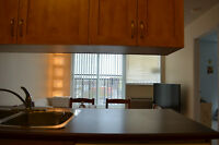 Downtown Condo, furnished, indoor garage, private garden, July