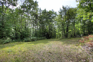 NEW PRICE! - BEAUTIFUL LOT WITH DRILLED WELL NEAR BANCROFT ON