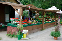 Produce Market Hiring.  Contract Position.  Sept. - Oct.31st.