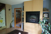 "40"" ELECTRIC FIREPLACE _ Wall-mounted"