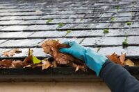 Eavestrough cleaning,leaf pick up and more!