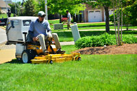 Looking for Experienced Lawn Care workers