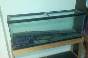 50 gallon fish tank