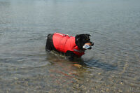 LOST MY DOGS LIFE VEST RED XL AT CHIPPAWA CREEK