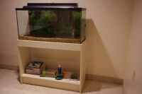 35 Gallon Fish Aquarium and Stand