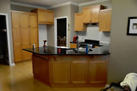 Professional Kitchen Cabinet & Furniture Spraying & Refinishing