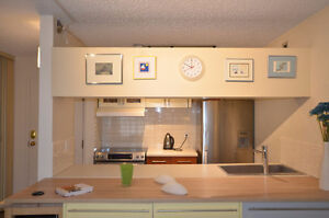 Downtown Calgary Condo 1 bedroom apartment, Fully furnished. Gre