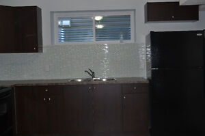 New Basement for Rent Available on 17 st From 1st September