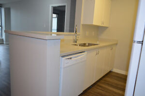 Spacious Newly Renovated 2 BDRM Downtown