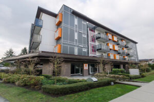 Spacious 2BR Penthouse with North shore mountain view