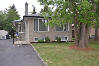 3 Rooms for rent new basement apartment.North York Yonge Steeles