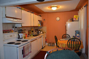 2 br lower level , Highland Park, next to bus stop