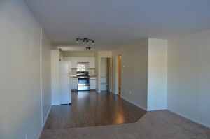 Newly Renovated 2BR Main-Level Suite