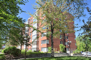 Renovated & Bright Unit in Manor Park