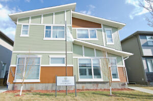 Luxury design & modern styled towmhomes in Harbour Landing.