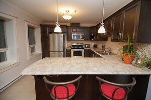 REDUCED OWNER WANTS SOLD! EXECUTIVE ONE BEDROOM CONDO TOP FLOOR! St. John's Newfoundland image 6