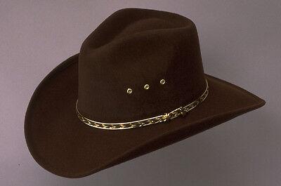 Mens Ladies Western Cowboy Hat Brown Pinch Front Stetson Line Dance Fancy Dress (Dance Western Cowboy Hat)