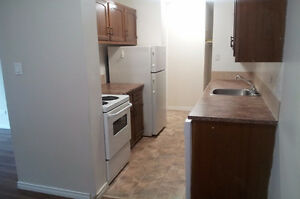 DOWNTOWN 1 B/R UNIT AVAILABLE!***825-12TH AVE. S.W.***