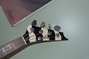 Phantom Zebra bass with Music Man style preamp upgrade.