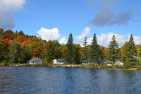 2bdr waterfront Cottages available for the long weekend!