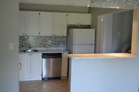 LUXURY RENOVATED 3BR TOWNHOUSE (MEADOWVALE)