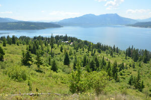 40 Acres Perfect For Developers/ Salmon Arm BC/ Shuswap Lake