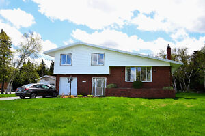 Beautiful Family Home on Quiet Street - 1/2 acre lot