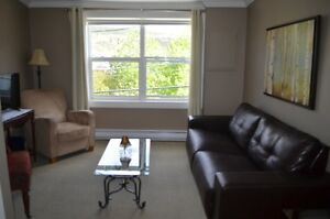 Furnished 2 Bedroom Downtown Suite