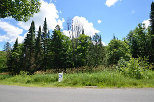 3.16 Acre Lot in a fabulous location with tons of privacy!