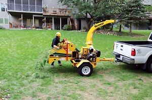 Tree Removal >Tree Triming >PruninG,FALL SPECIAL...... Kitchener / Waterloo Kitchener Area image 2