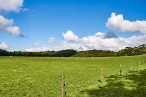 WANTED VACANT LAND / AGRICULTURAL