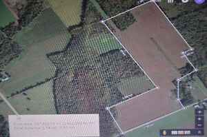 Excellent tile drained farm land for sale Cornwall Ontario image 3